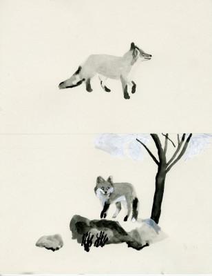 Xue Picks: Aidan Koch
