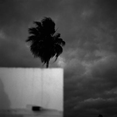 Subtropico by Esteban Lahoz